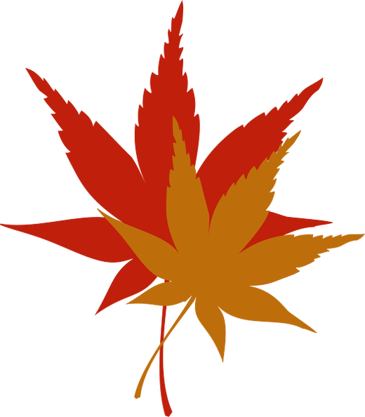 colored-fall-leaves.png