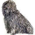 Puli-breed