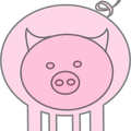 pig-from-front