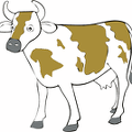 brown-spotted-Cow