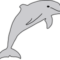 dolphin-drawing
