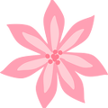 Pink-Lily