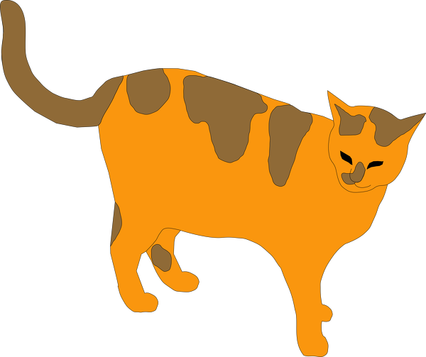 brown-spotted-cat.png